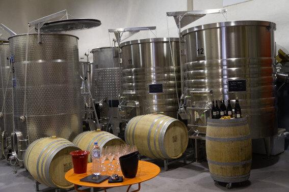Kistjewijn.be: een wijnkater